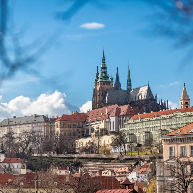 """""""Prague Castle, Prague, Czech Republic"""" stock image"""