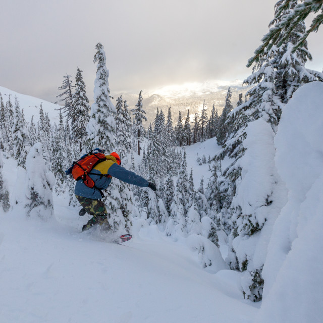 """Backcountry Snowboarding"" stock image"