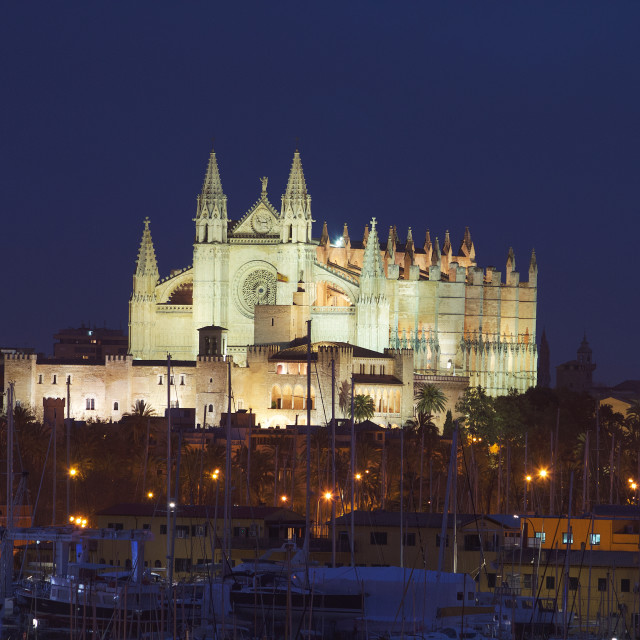 """Palma Cathedral"" stock image"