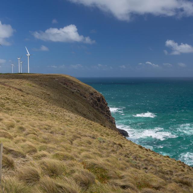 """""""Woolnorth Windfarm, North West Tasmania"""" stock image"""