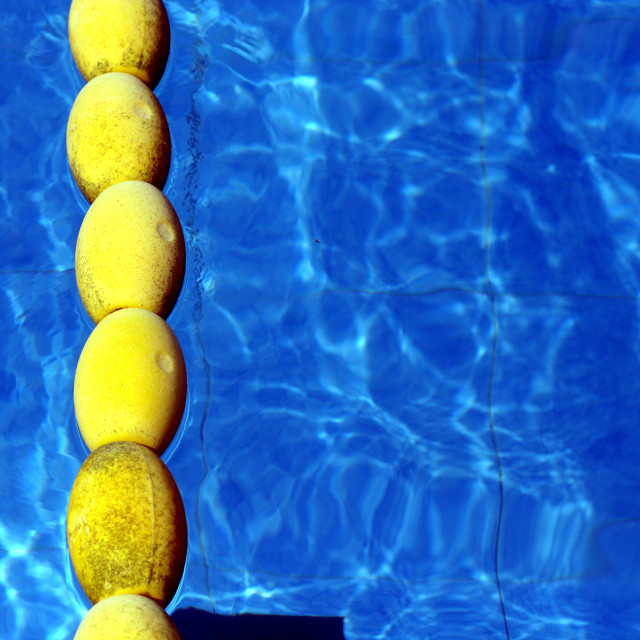 """Floating lane separators in a swimming pool"" stock image"