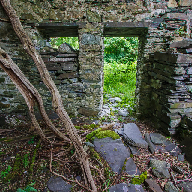 """""""A Derelict Cottage"""" stock image"""