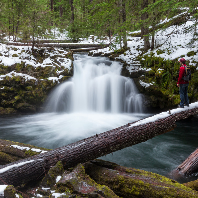 """""""Exploring a Snowy Waterfall"""" stock image"""