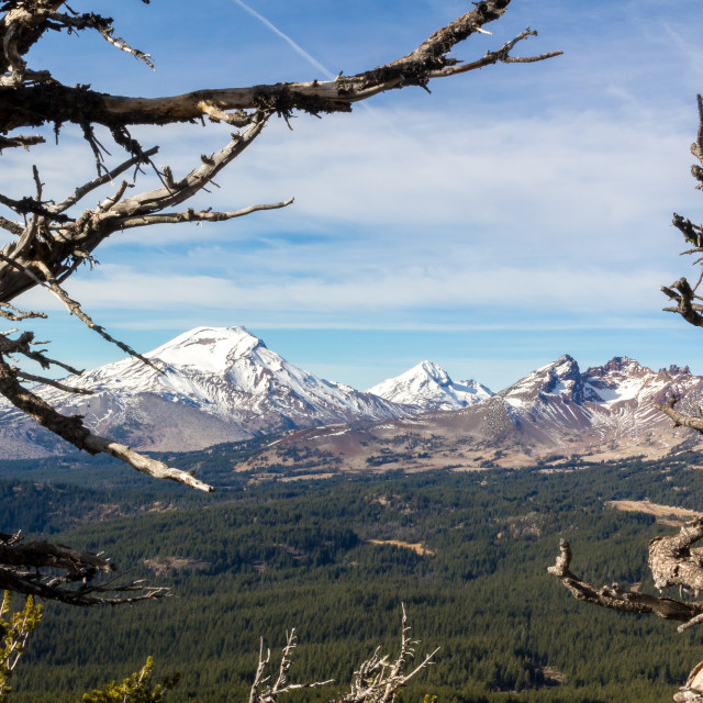 """""""Mountains Framed by Trees"""" stock image"""