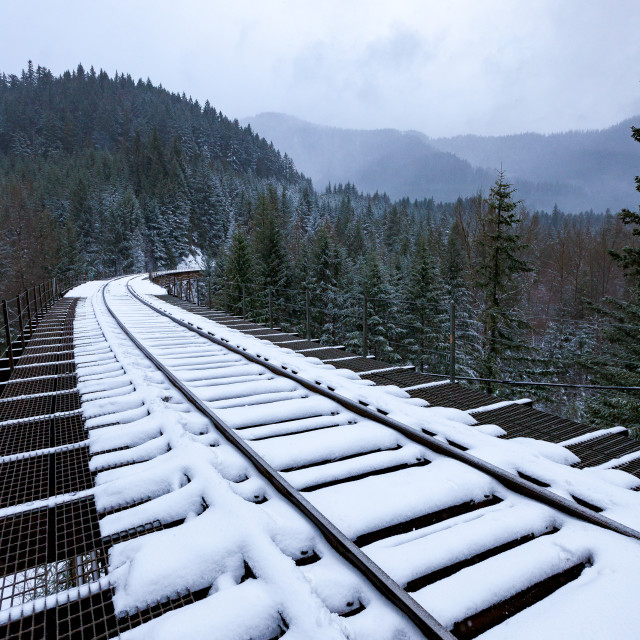 """Snowy Train Tracks"" stock image"
