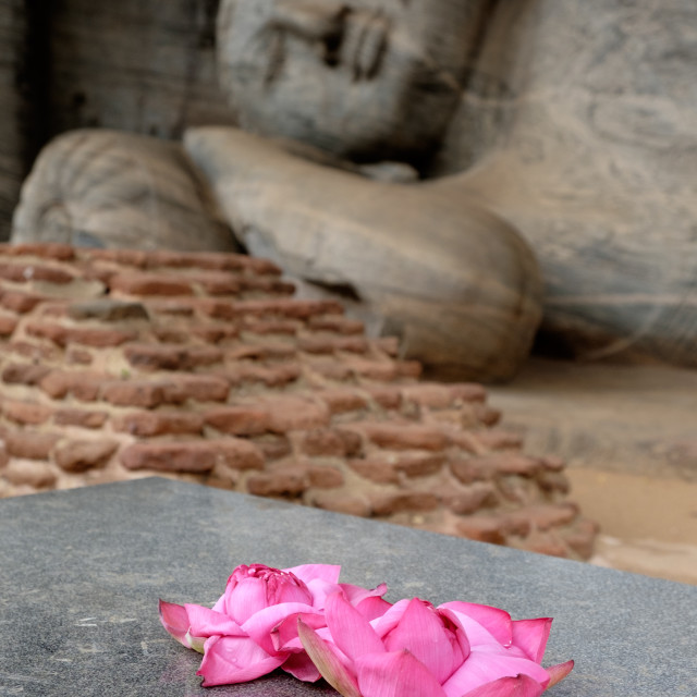 """Offering at Gal Vihara temple"" stock image"