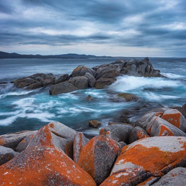 """""""Skeleton Point, Bay of Fires, Tasmania"""" stock image"""