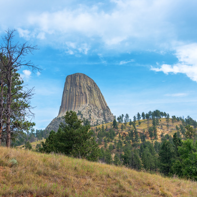 """Devils Tower and Hills"" stock image"