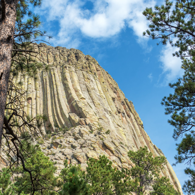 """Devils Tower Closeup"" stock image"