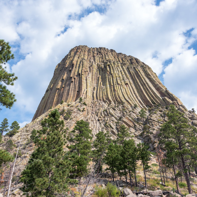"""Devils Tower National Monument"" stock image"