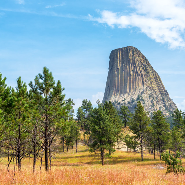 """Stunning Devils Tower"" stock image"