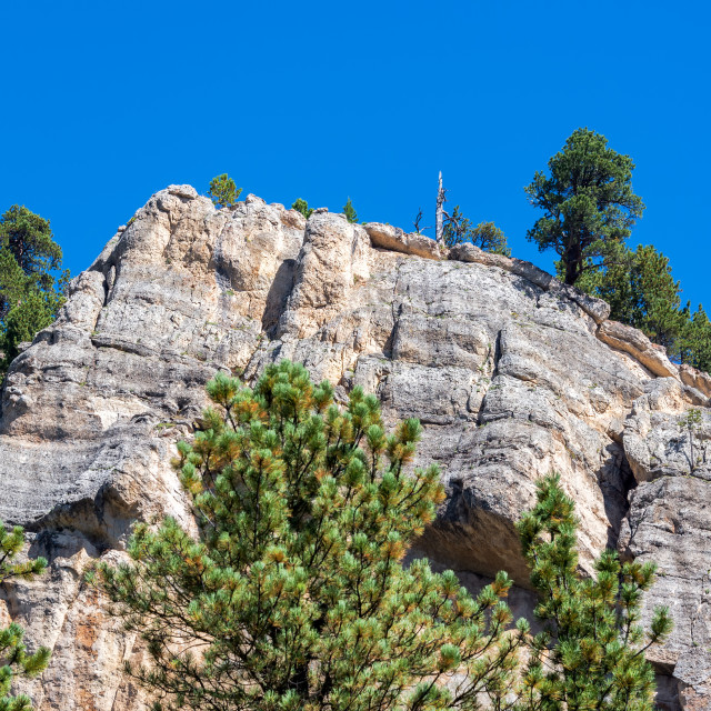 """Cliff Face in South Piney Canyon"" stock image"