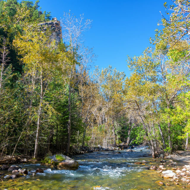 """South Piney Creek"" stock image"
