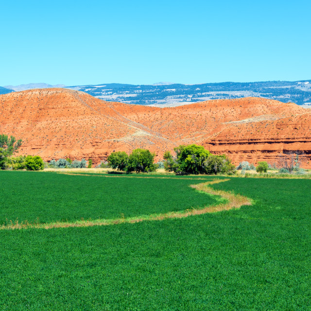 """Farmland and Red Hills"" stock image"