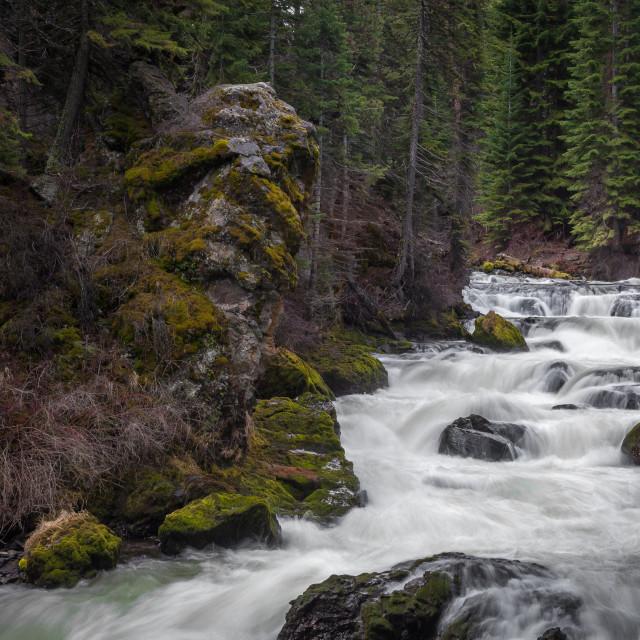 """""""Rushing River"""" stock image"""