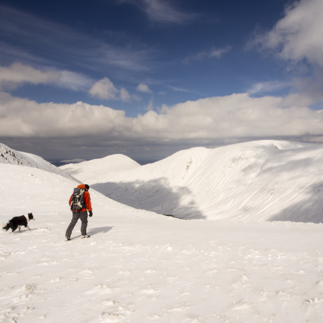 """""""A walker on Gray Crag looking towards High Street and the Knott in..."""" stock image"""