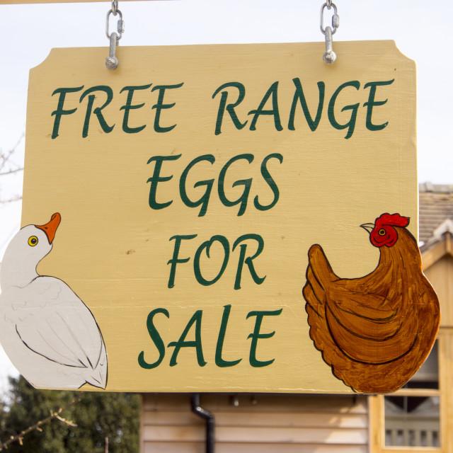 """A sign for free range eggs in Cardington, Shropshire, UK."" stock image"