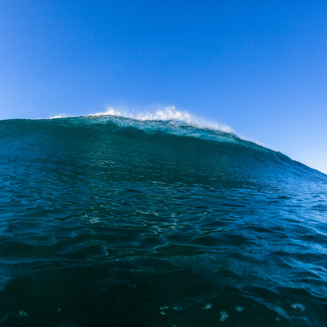 """Swimming Ocean Wave"" stock image"