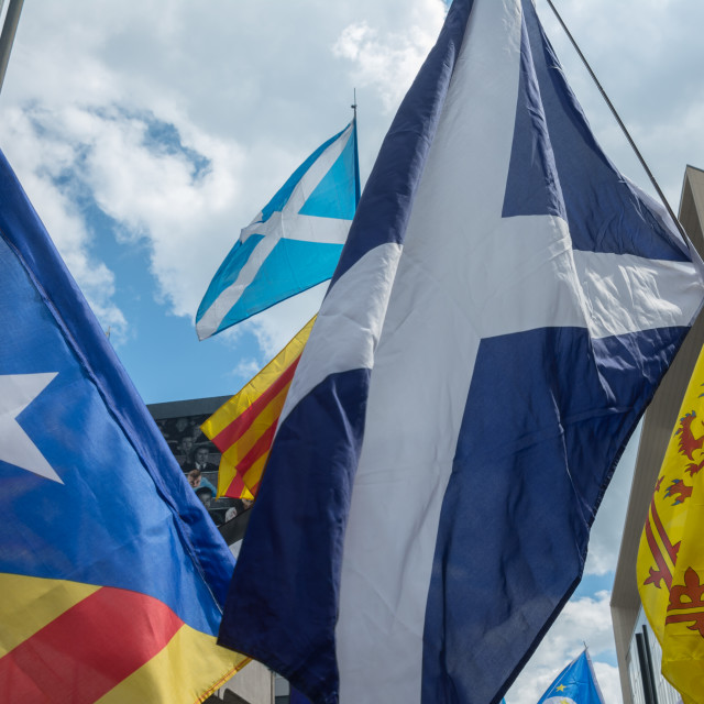 """""""independence flags"""" stock image"""
