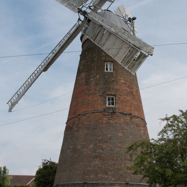 """Stanstead Mountfitchet Windmill"" stock image"