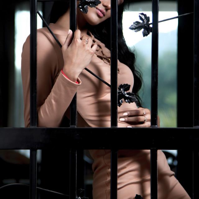 """Beauty Behind Bars"" stock image"