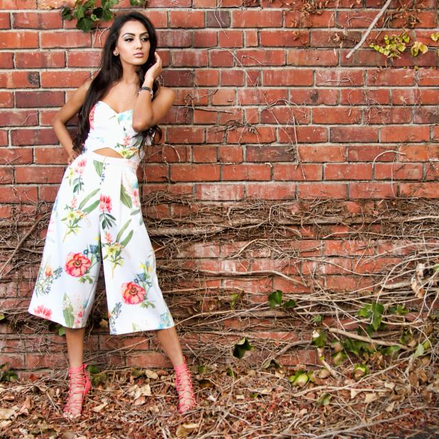 """Fashionable Beauty"" stock image"