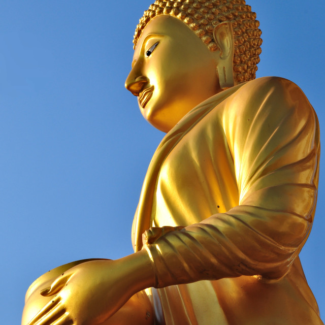 """Buddha holding the alms bowl"" stock image"