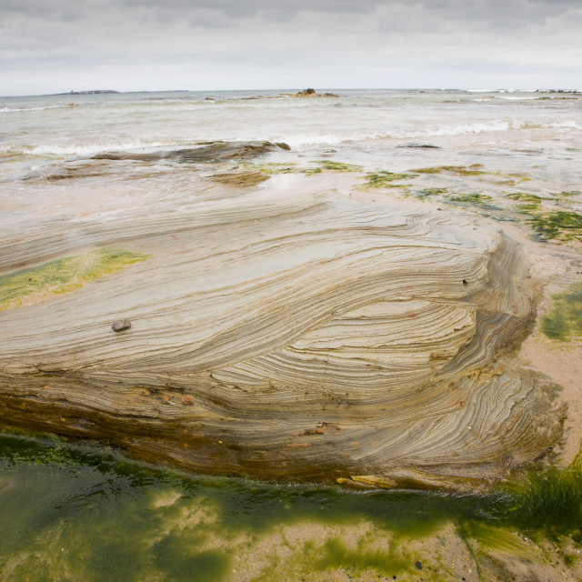 """""""Bedding planes in Sandstone on the beach at Seahouses, Northumberland, UK."""" stock image"""