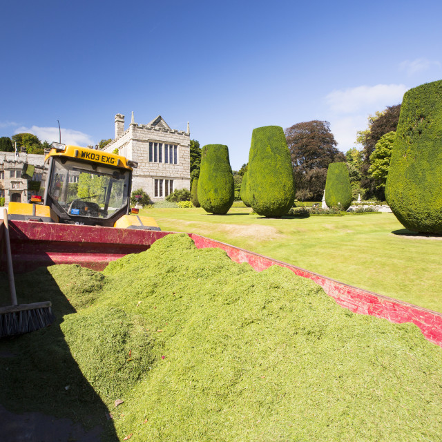"""Mowing the lawns of the formal gardens of Lanhydrock a country residence..."" stock image"