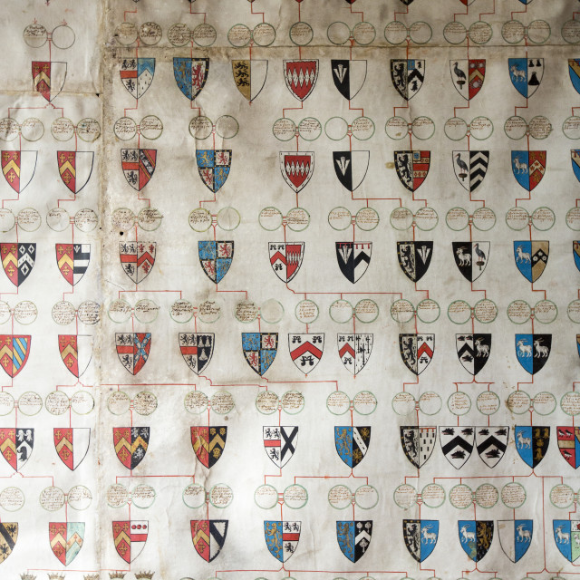 """An ancient heraldic pedigree roll of the Robartes family at Lanhydrock a..."" stock image"