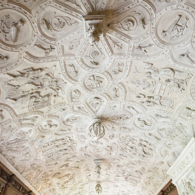 """The 17th century ornate plaster ceiling at Lanhydrock a country residence..."" stock image"