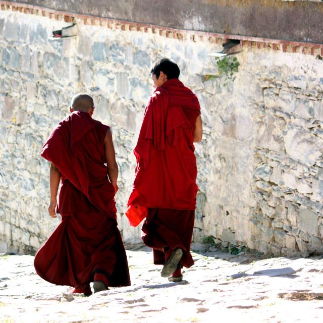 """Shigatse, Ta Shi Lhun Po Monastery"" stock image"