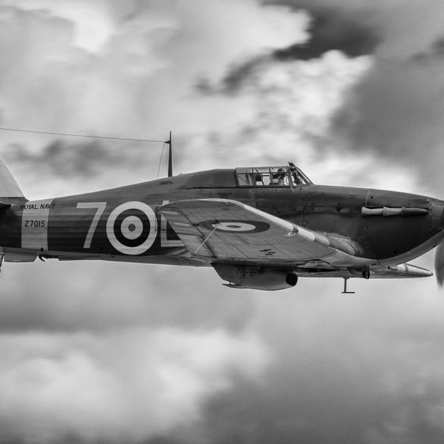 """Hawker Sea Hurricane"" stock image"