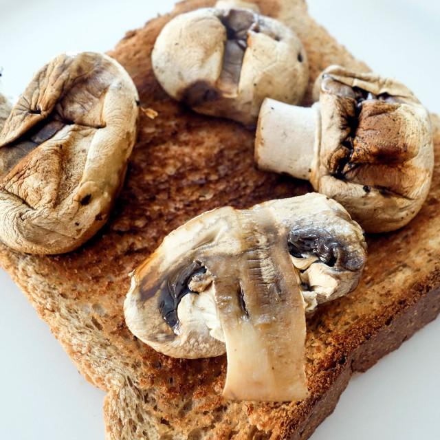 """""""Grilled Mushrooms on Toast"""" stock image"""