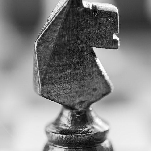 """""""Chess knight pawn on chess board close up. Black and white"""" stock image"""