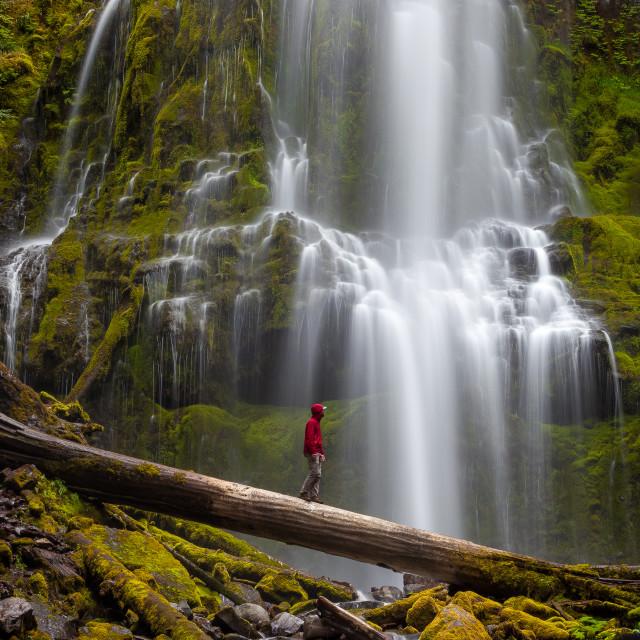 """""""Proxy Falls Waterfall"""" stock image"""