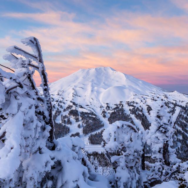 """Mount Bachelor Sunrise"" stock image"