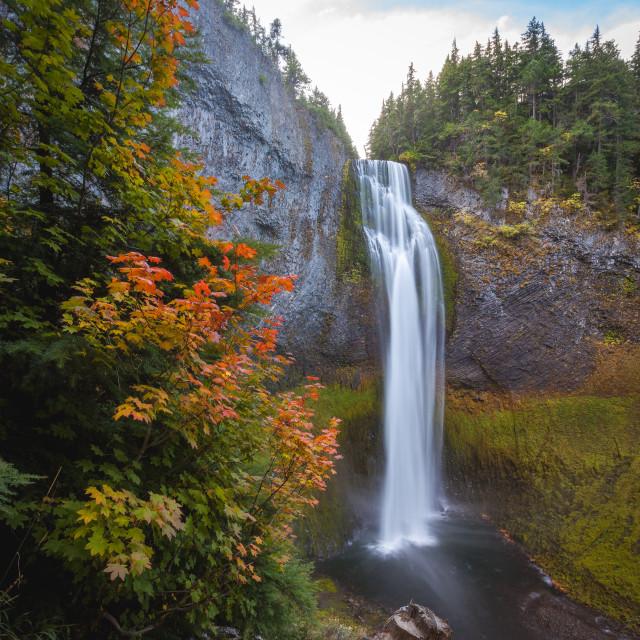 """""""Waterfall in Fall"""" stock image"""