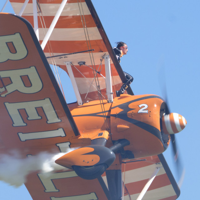 """""""Wingwalkers up close and personal."""" stock image"""