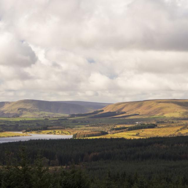 """""""Stocks reservoir in Gisburn Forest, Lancashire, UK."""" stock image"""