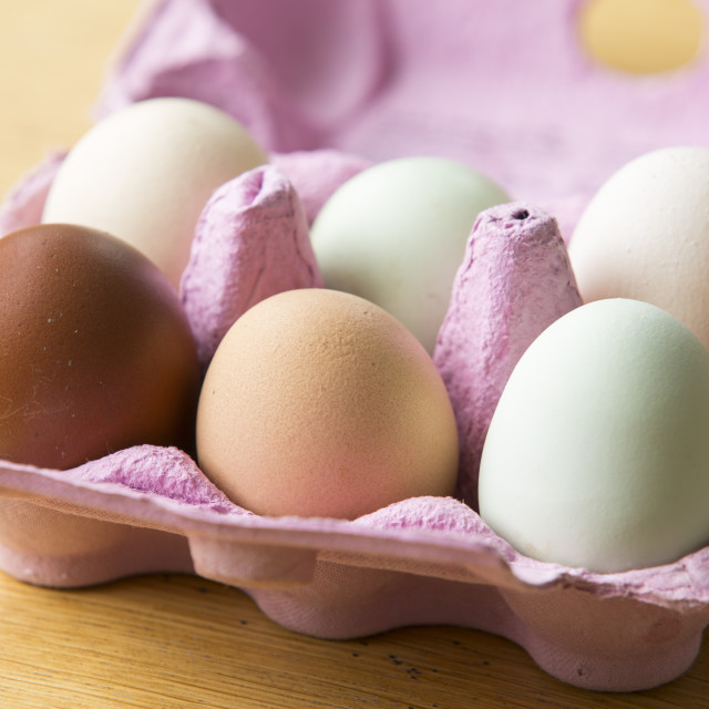 """""""Free range eggs from happy chickens of different breeds."""" stock image"""
