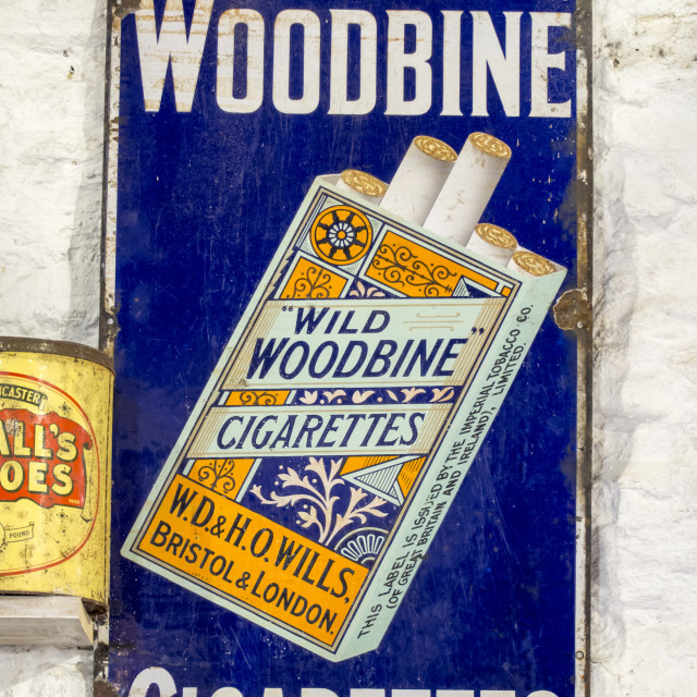 """An old advert for Woodbine Cigarettes."" stock image"