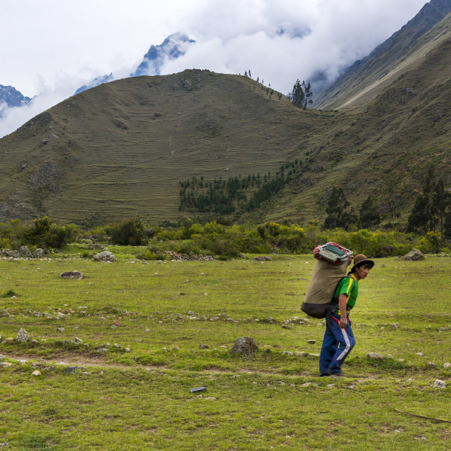 """Sacred Valley, Peru - January 1, 2014: Porter carrying an heavy backpack in the Inca Trail do Machu Pichu, in the mountains around the Sacred Valley, Peru."" stock image"
