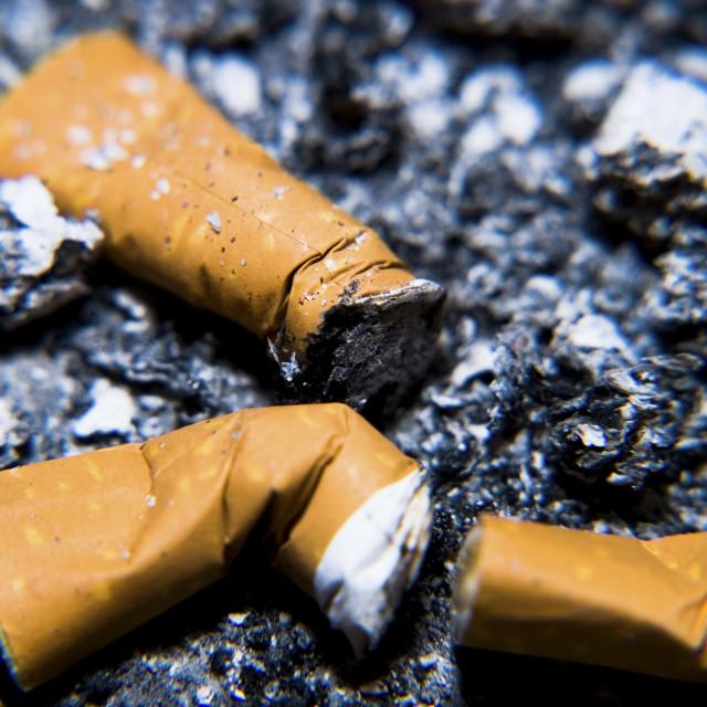 """Cigarette Butts"" stock image"