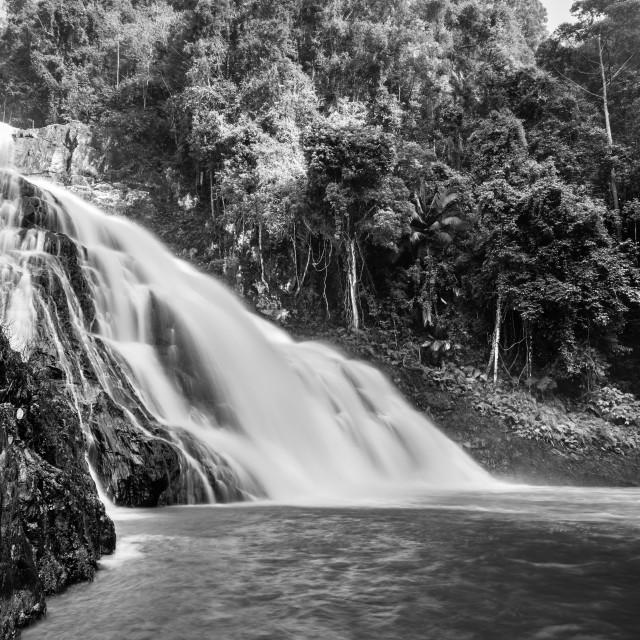 """""""Takah Tinggi waterfall in Endau Rompin National Park, Malaysia."""" stock image"""