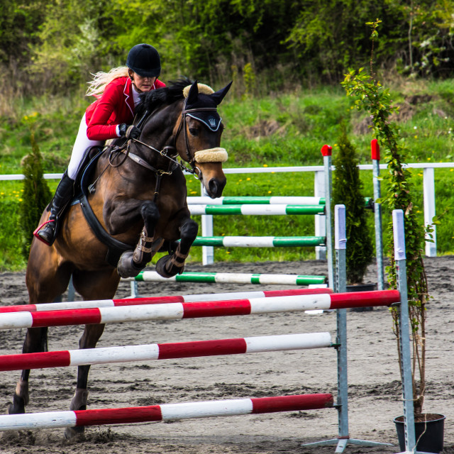 """""""Horse jumping [1]"""" stock image"""