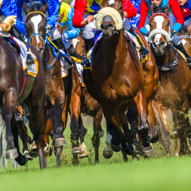 """Horses Jockeys Racing"" stock image"