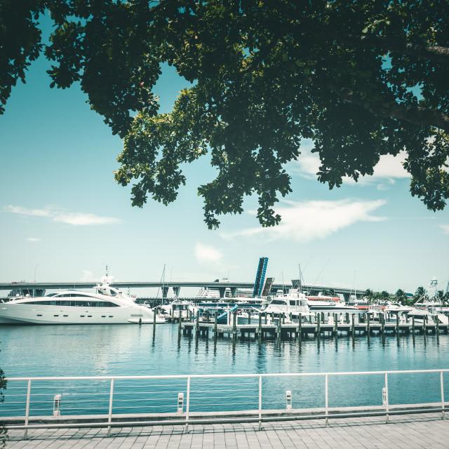 """""""Miami Bayside Marina"""" stock image"""