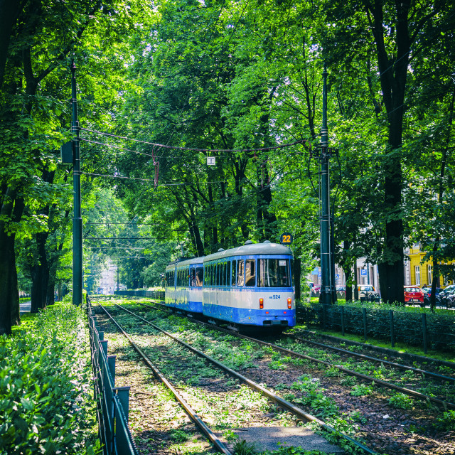 """Polish Tram."" stock image"