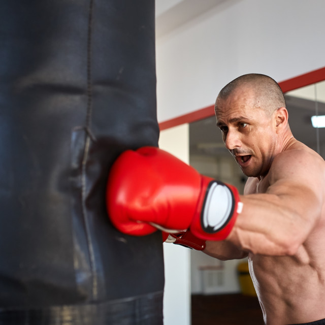 """""""Boxer with heavy bag"""" stock image"""